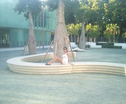 Puerto de Málaga - Flaschenbäume