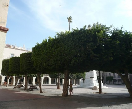 Plaza de la Constitución, Almería