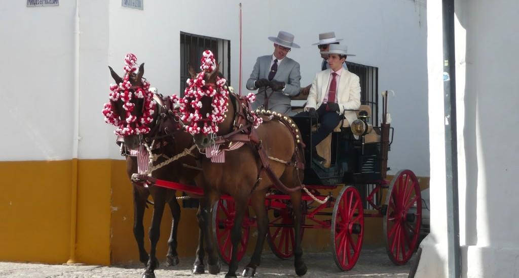 Ronda, Spanien - Traditionelle Kutsche
