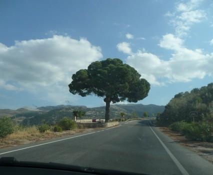Mirador (Aussichtspunkt) – Fahrt von Gaucín nach Algeciras